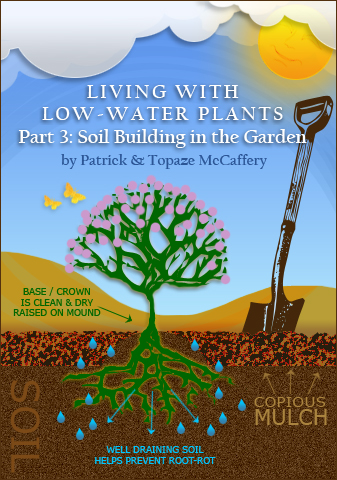Taproot garden design fine gardening living with low for Is soil living