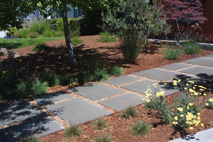 landscaping design low maintenance