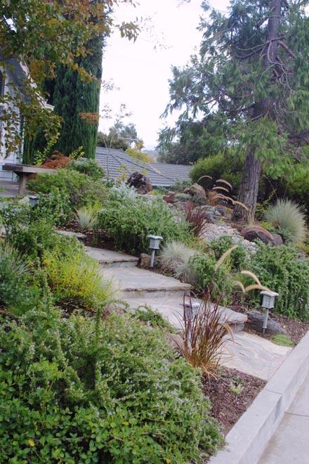 Garden Design Bay Area click Back To Garden Landscape Design Main Page