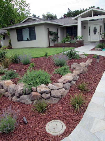 Low water drought tolerant garden landscape design in for Low water garden design