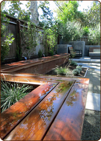 Low Water, All Organic, Ecologically Responsible Garden Design Site